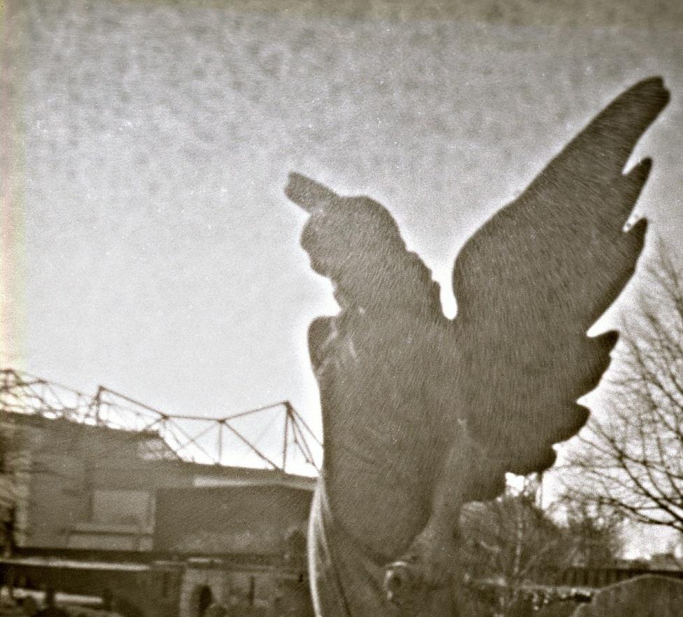 Cemetery, Grazyna Cydzik, photography